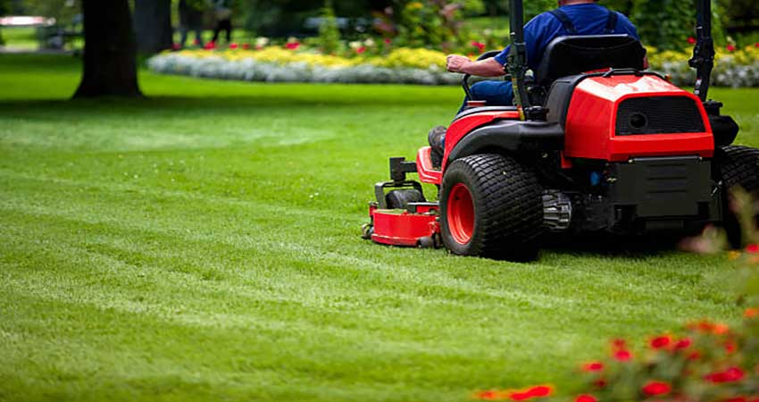 Amazing benefits of choosing commercial landscaping service