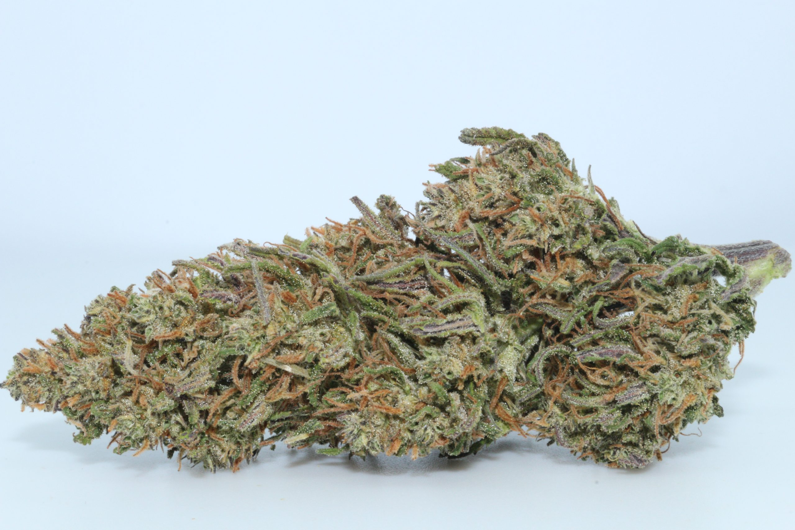Buy Best Weed Delivery in Toronto